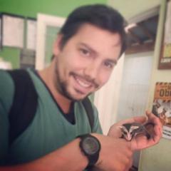 Guigo Rodrigo