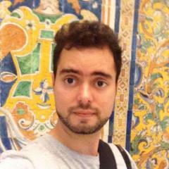 Rodrigo Nitrini